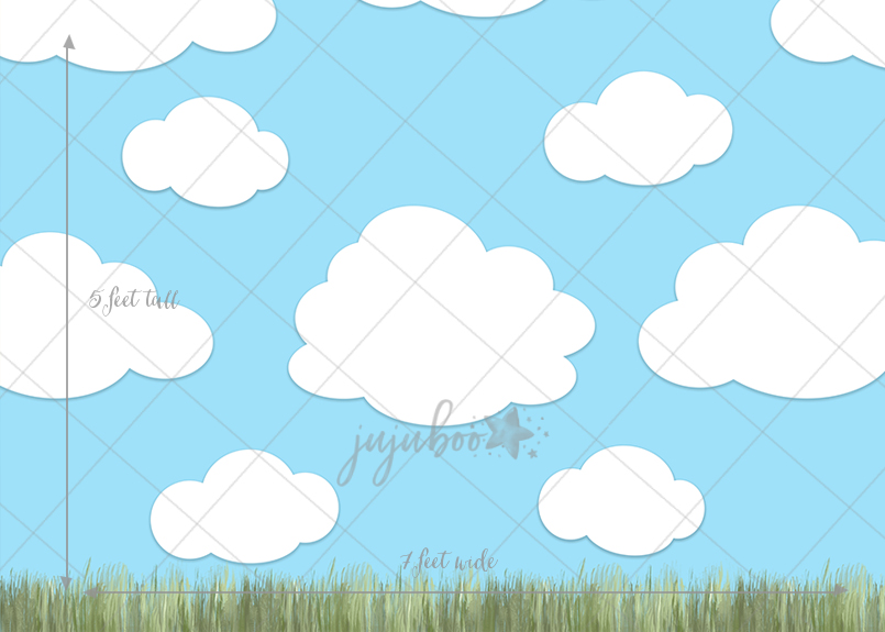 Jujuboo Cloudy Afternoon Photography Backdrop