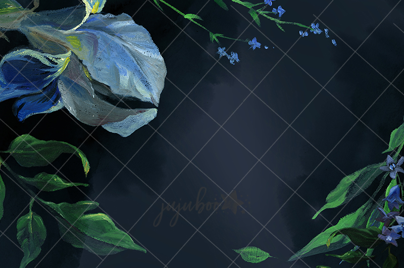 Jujuboo Iris - Fine Art Photography Backdrop