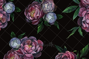 Jujuboo Dark Roses - Fine Art Photography Backdrop