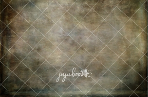 Jujuboo Fine Art Fog Photography Backdrop
