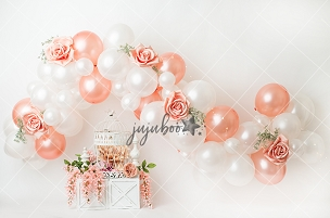 Jujuboo Francine Grand Balloon Garland Photography Backdrop