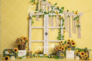 Jujuboo Happy Day Photography Backdrop