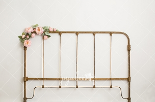 Jujuboo Mary Bed Style Photography Backdrop