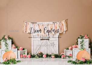 Jujuboo Peachy Photography Backdrop