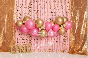 Jujuboo Pink and Gold Garland with One Photography Backdrop