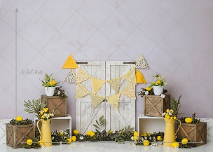 Jujuboo Rustic Lemon Photography Backdrop