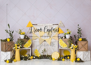 Jujuboo Rustic Lemon 2 Photography Backdrop
